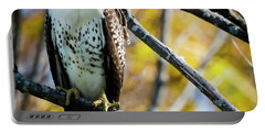 Autumn Red-tailed Hawk Portable Battery Charger