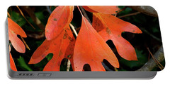 Autumn Sassafras Leaves Portable Battery Charger