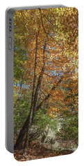 Portable Battery Charger featuring the photograph Autumn Show On The River by Lon Dittrick