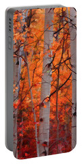 Autumn Splendor Portable Battery Charger by Don Schwartz