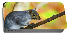 Portable Battery Charger featuring the photograph Autumn Squirrel by Karol Livote
