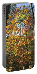 Autumn Sunday Portable Battery Charger