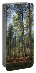 Autumn Tranquil Forest Portable Battery Charger