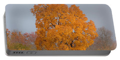 Autumn Tree Portable Battery Charger by Donald C Morgan