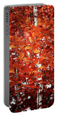 Autumn Triumph Portable Battery Charger