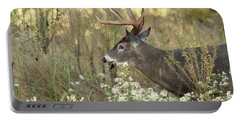 Autumn Whitetail In The Smokies Portable Battery Charger