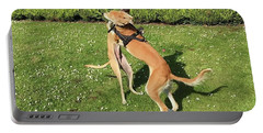 Ava The Saluki And Finly The Lurcher Portable Battery Charger
