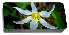 Avalanche Lily Portable Battery Charger