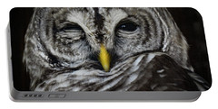 Avery's Owls, No. 11 Portable Battery Charger