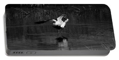 Portable Battery Charger featuring the photograph Avocet Courtship Dance by John F Tsumas