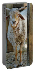 Awassi Sheep Portable Battery Charger