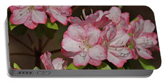 Portable Battery Charger featuring the photograph Azalea by Sandy Keeton