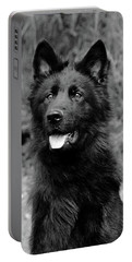 Portable Battery Charger featuring the photograph Aziza  by Sandy Keeton