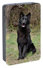 Portable Battery Charger featuring the photograph Aziza Sitting by Sandy Keeton