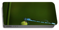 Azure Damselfly-coenagrion Puella Portable Battery Charger