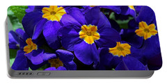 Portable Battery Charger featuring the photograph Azure Primrose by Michiale Schneider