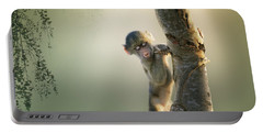 Baby Baboon In Tree Portable Battery Charger