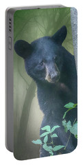 Baby Bear Takes A Peek Portable Battery Charger
