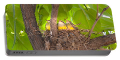 Baby Birds Waiting For Mom Portable Battery Charger