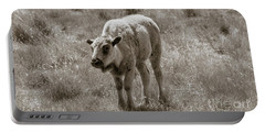 Portable Battery Charger featuring the photograph Baby Buffalo In Field With Sky by Rebecca Margraf