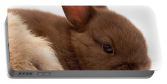 Portable Battery Charger featuring the photograph Baby Bunny  #03074 by John Bald