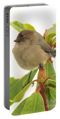 Baby Bushtit Portable Battery Charger