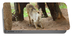 Baby Caribou Rising Portable Battery Charger by Sean Griffin