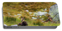 Baby Chamois Portable Battery Charger