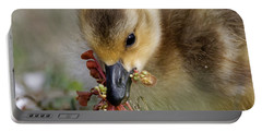Baby Chick With Water Flowers Portable Battery Charger