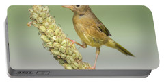 Baby Common Yellow Throat Warbler Portable Battery Charger