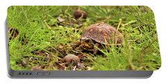 Baby Eastern Box Turtle Portable Battery Charger