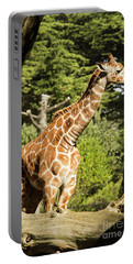 Baby Giraffe 2 Portable Battery Charger