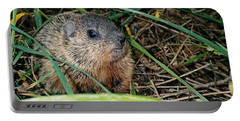 Baby Groundhog Portable Battery Charger