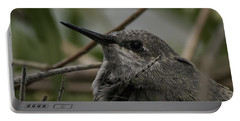 Baby Humming Bird Portable Battery Charger