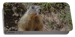 Baby Marmot Portable Battery Charger