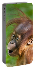 Baby Orangutan Portable Battery Charger