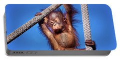 Baby Orangutan Hanging Out Portable Battery Charger by Stephanie Hayes