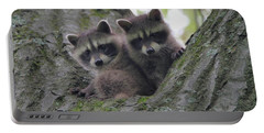 Baby Raccoons In A Tree Portable Battery Charger by Dan Sproul
