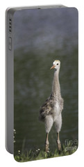 Baby Sandhill Crane Portable Battery Charger
