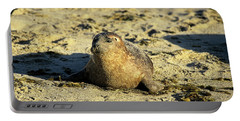 Baby Seal In Sand Portable Battery Charger