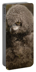Baby Snowy Owl Portable Battery Charger