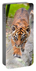 Baby Sumatran Tiger Cub Portable Battery Charger