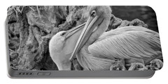 Baby White Pelican Talks To Mother White Pelican Portable Battery Charger