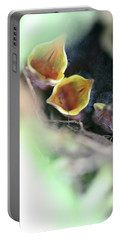 Portable Battery Charger featuring the photograph Baby Wrens In The Flowers 338 by Ericamaxine Price