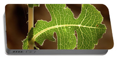 Portable Battery Charger featuring the photograph Back Side Light On A Leaf At Sunset by Yoel Koskas