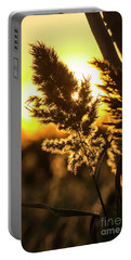 Portable Battery Charger featuring the photograph Backlit By The Sunset by Zawhaus Photography