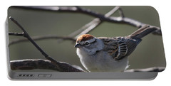 Portable Battery Charger featuring the photograph Backlit Chipping Sparrow by Susan Capuano