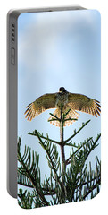 Backlit Landing Hawk Portable Battery Charger