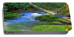 Backwoods Stream Portable Battery Charger