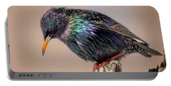 Backyard Birds European Starling Square Portable Battery Charger by Bill Wakeley